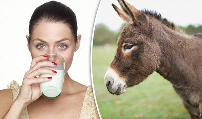 Будет ли ослиное молоко следующим модным трендом для красоты