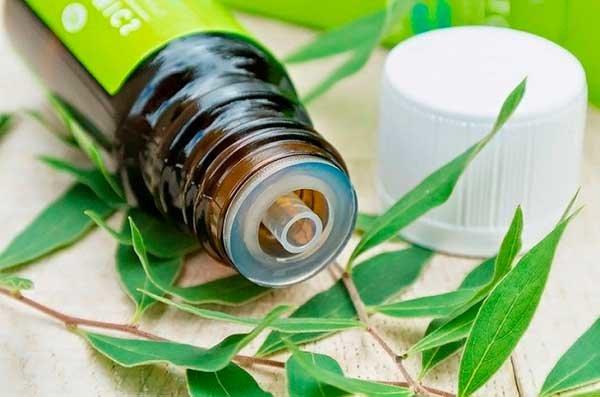 Как использовать масло чайного дерева для кожи